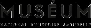 Logo - minimal